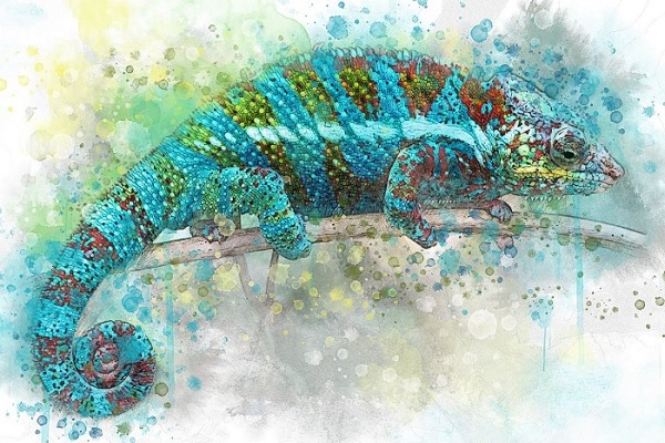 The Chameleon: The Spirit Animal of Borderline Personality Disorder