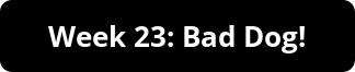 week 23 button