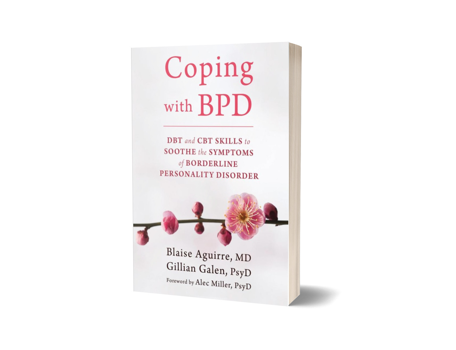 Product Review – Coping with BPD: DBT and CBT Skills